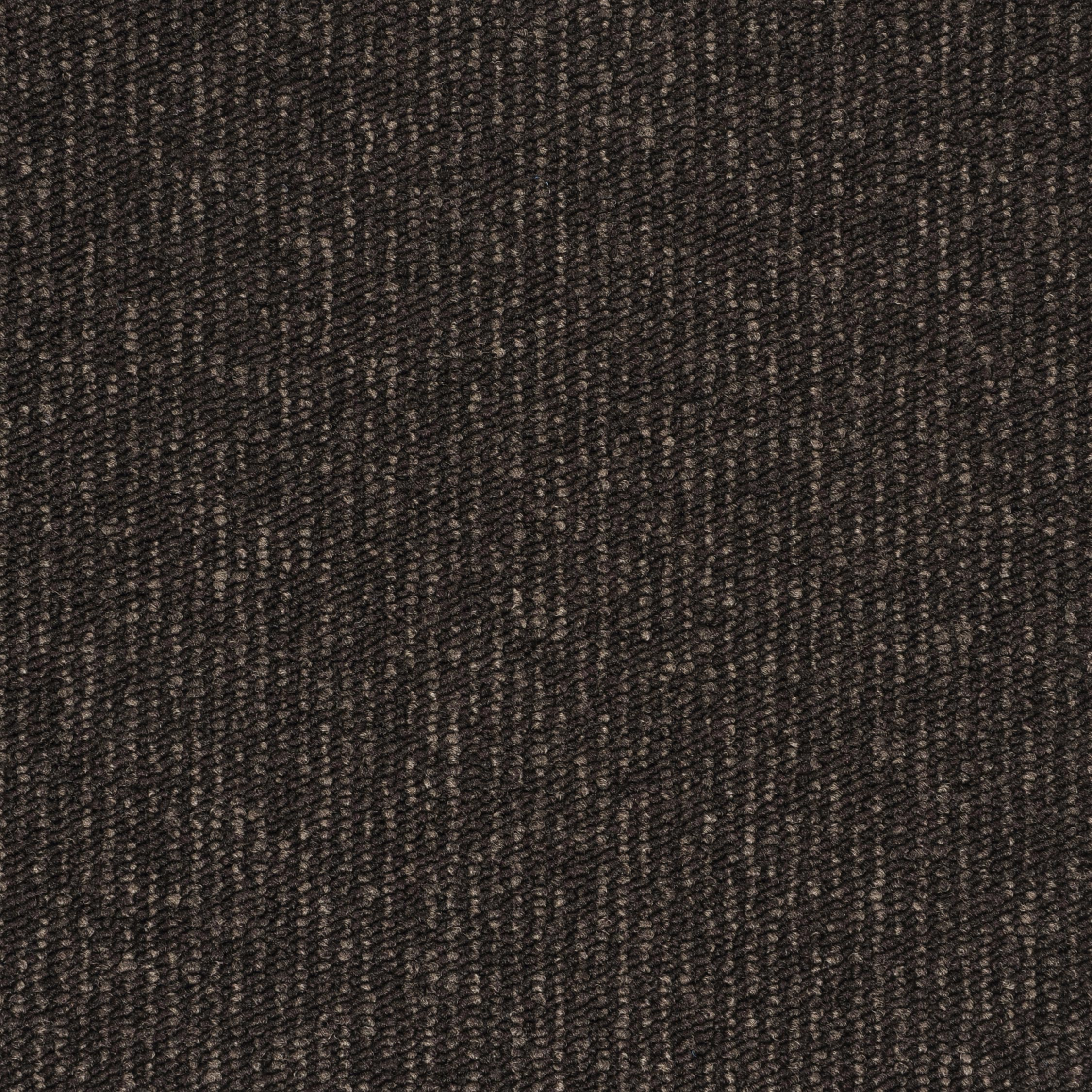 Contra Stripe dark brown